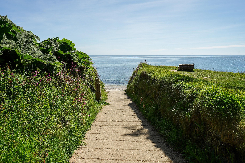 Bream Cove path