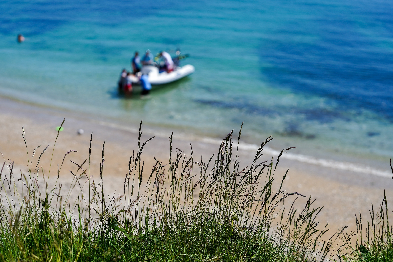 Meudon boat grass