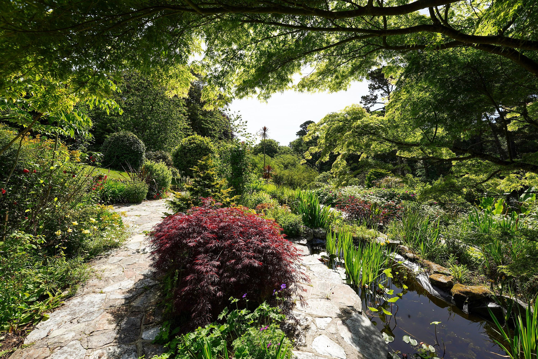 Meudon gardens pond