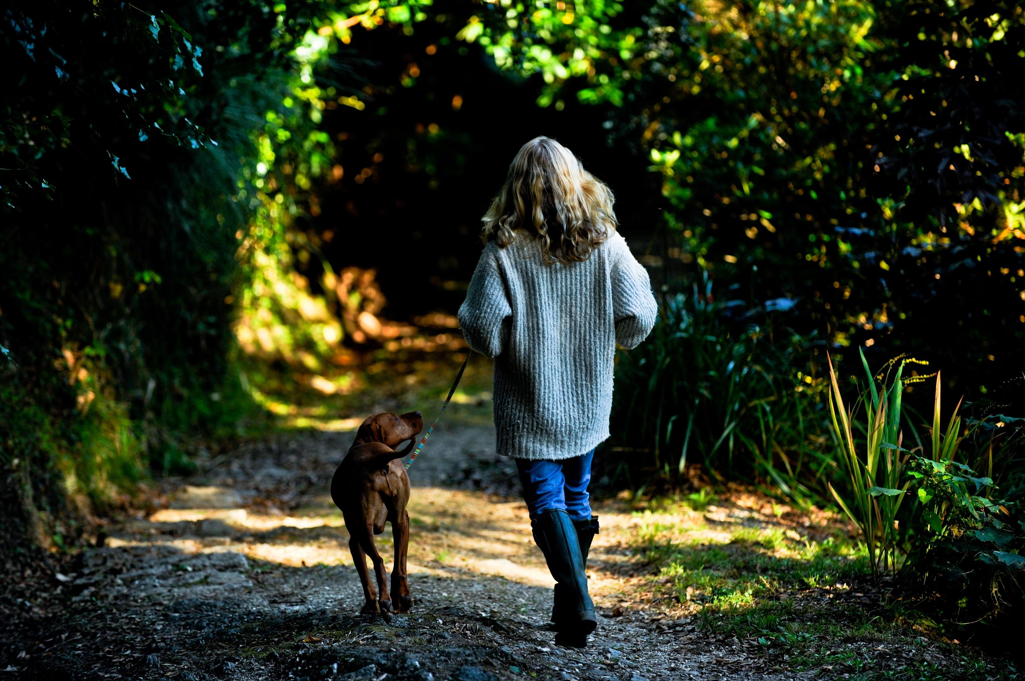 Walking dogs gardens Hotel Meudon