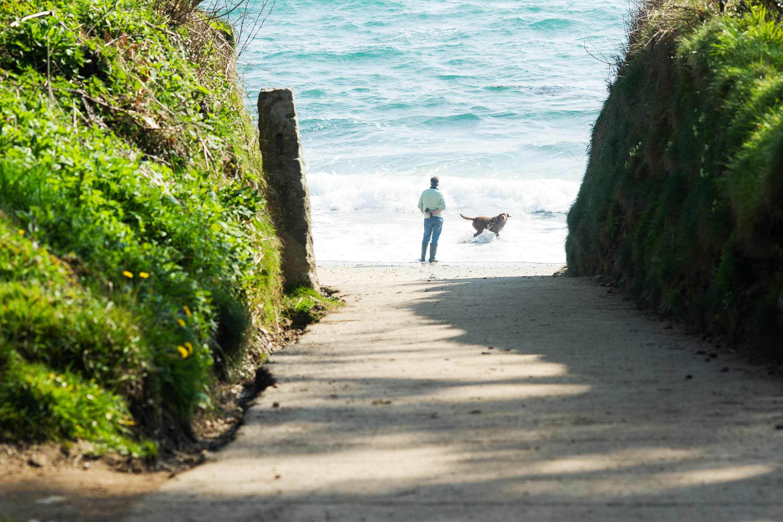 Meudon hotel beach pathway bream cove 3000x2000